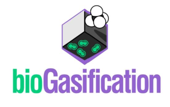 biogasification